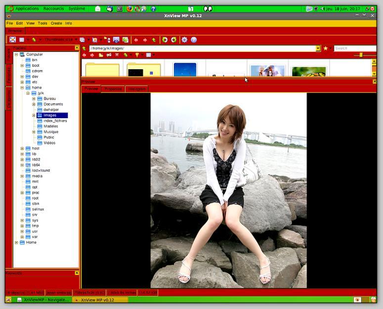 Xnviewmp скачать бесплатно - фото 4